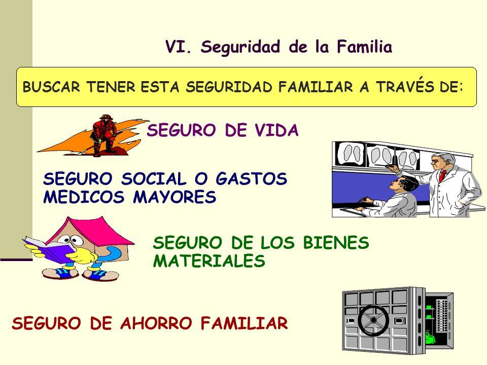 VI. Seguridad de la Familia
