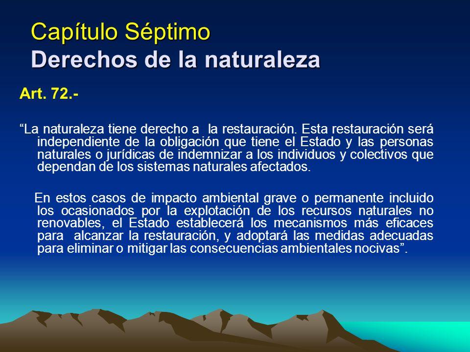 Capítulo Séptimo Derechos de la naturaleza