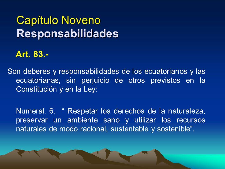 Capítulo Noveno Responsabilidades