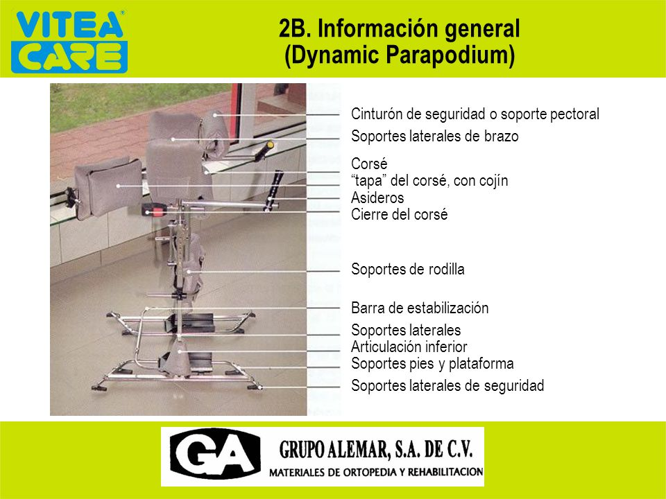 2B. Información general (Dynamic Parapodium)
