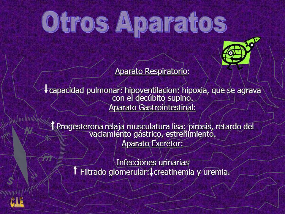 Otros Aparatos Aparato Respiratorio: