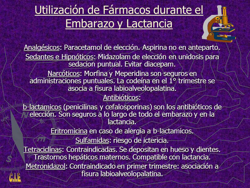 Utilización de Fármacos durante el Embarazo y Lactancia