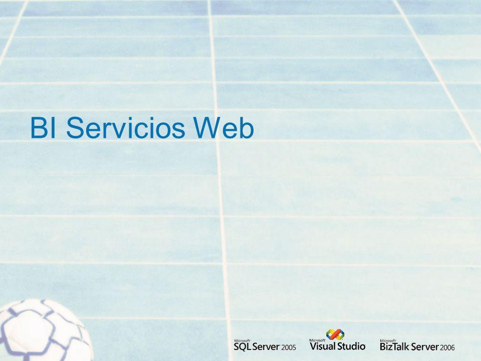 BI Servicios Web
