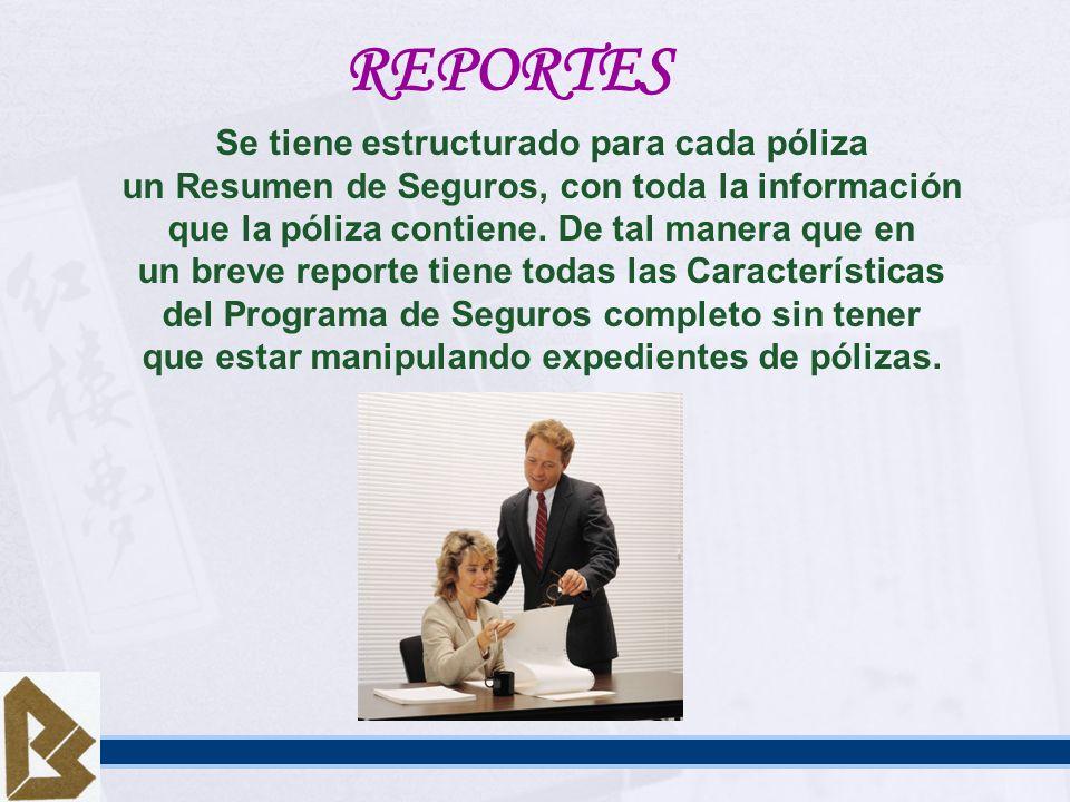 REPORTES Se tiene estructurado para cada póliza