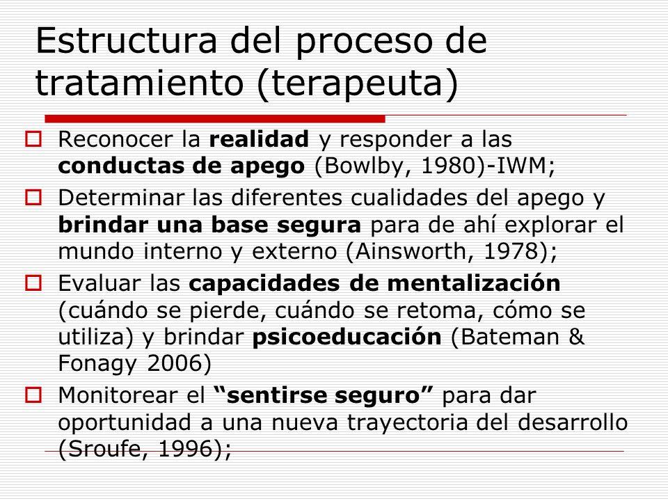 Estructura del proceso de tratamiento (terapeuta)