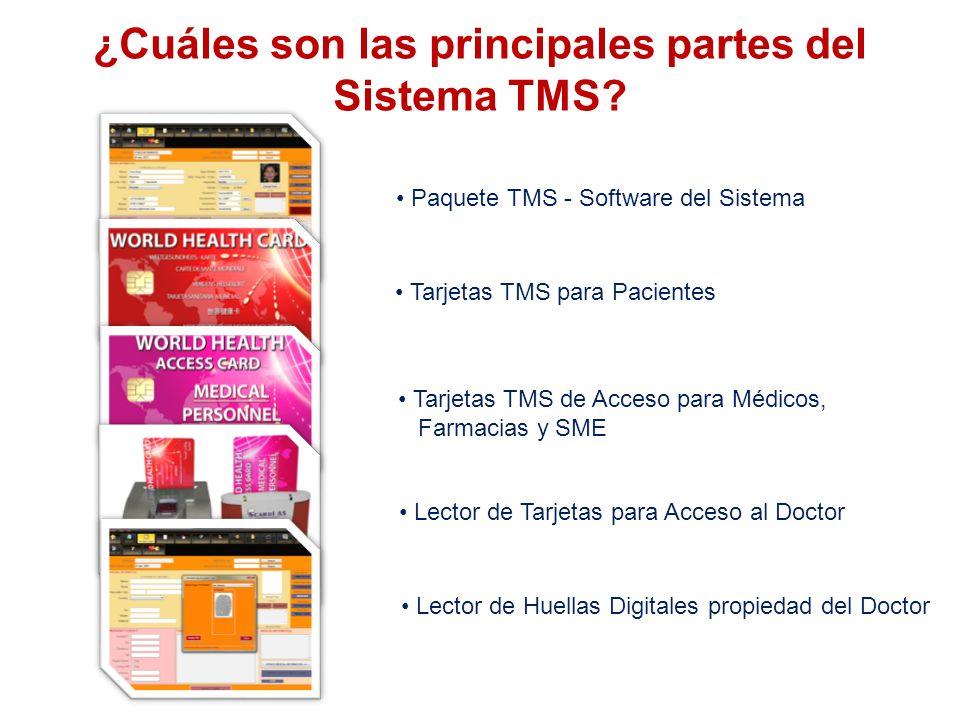 ¿Cuáles son las principales partes del Sistema TMS