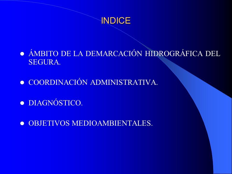 INDICE ÁMBITO DE LA DEMARCACIÓN HIDROGRÁFICA DEL SEGURA.