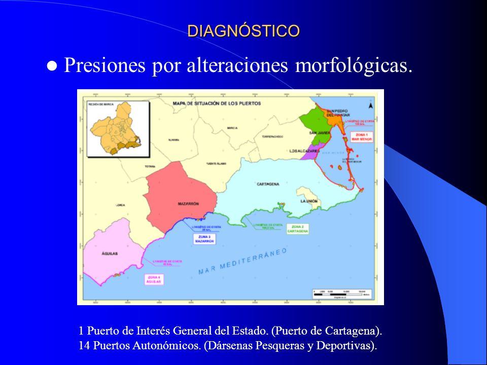 Presiones por alteraciones morfológicas.