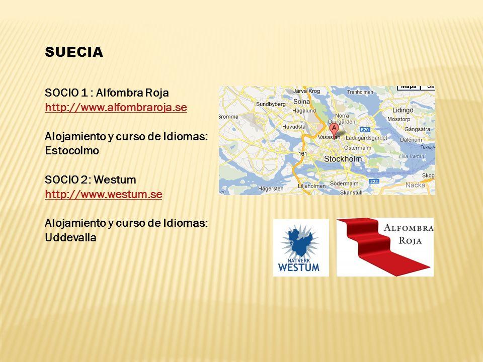 SUECIA SOCIO 1 : Alfombra Roja http://www.alfombraroja.se