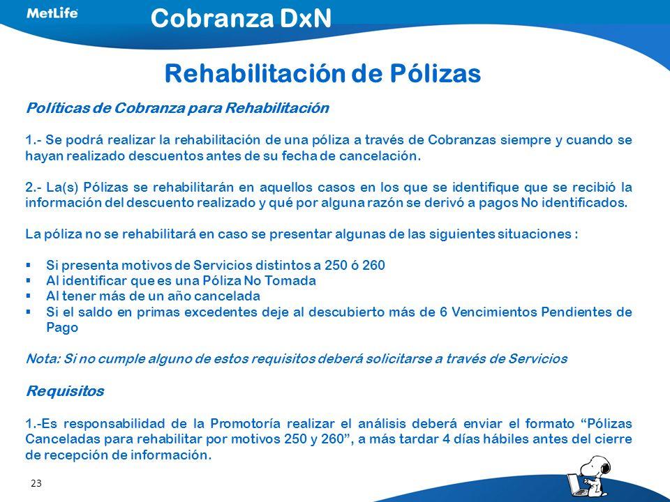 Rehabilitación de Pólizas