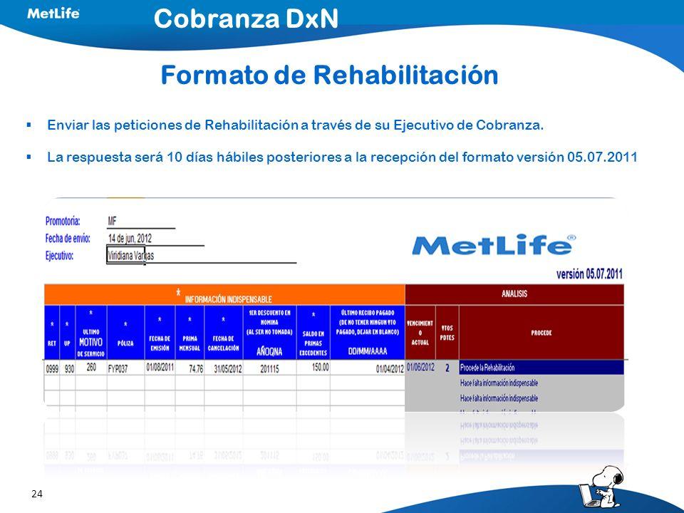 Formato de Rehabilitación