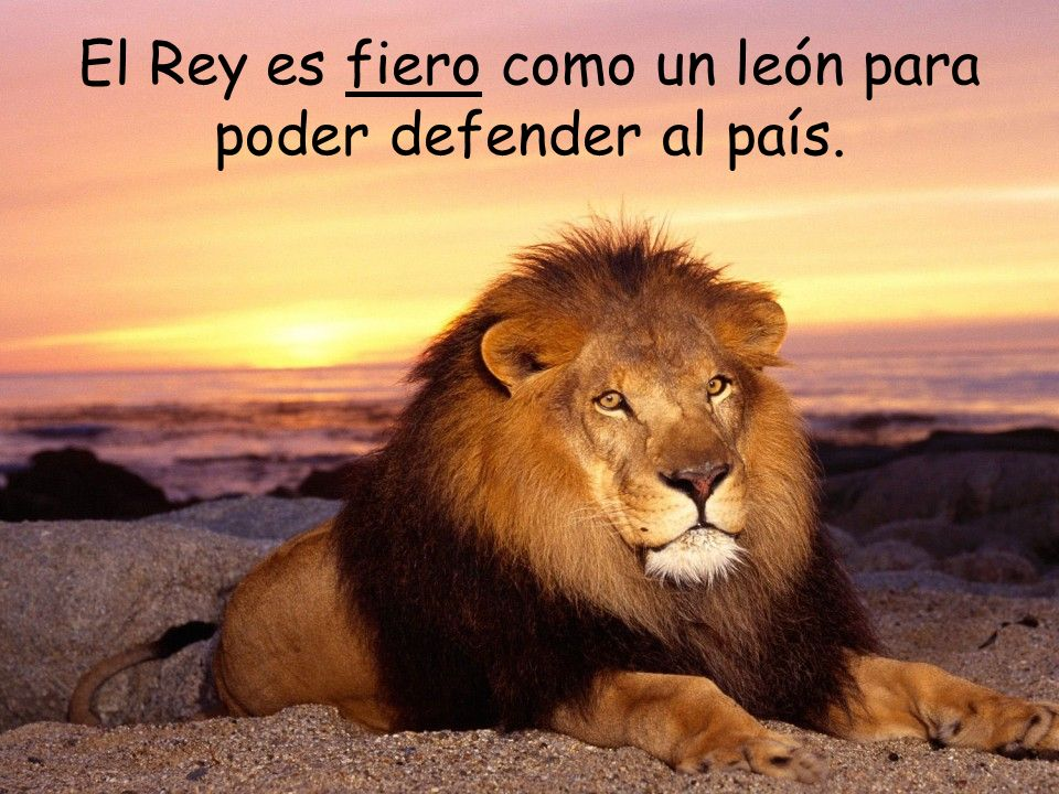 El Rey es fiero como un león para poder defender al país.