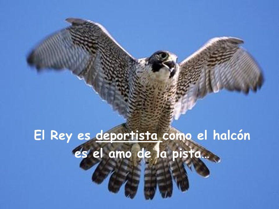 El Rey es deportista como el halcón