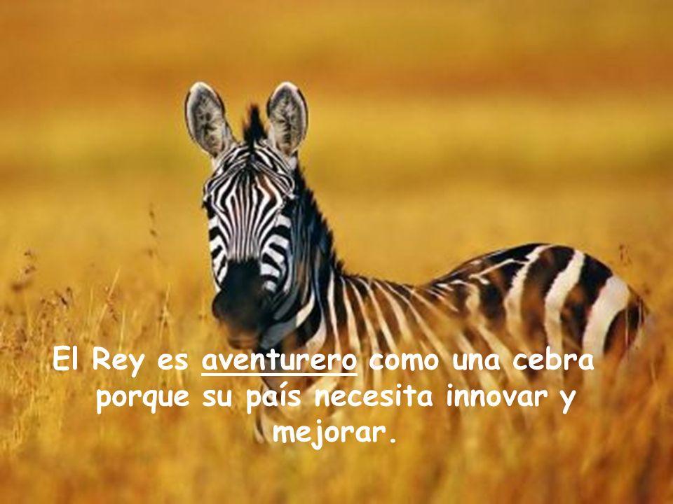 El Rey es aventurero como una cebra porque su país necesita innovar y mejorar.