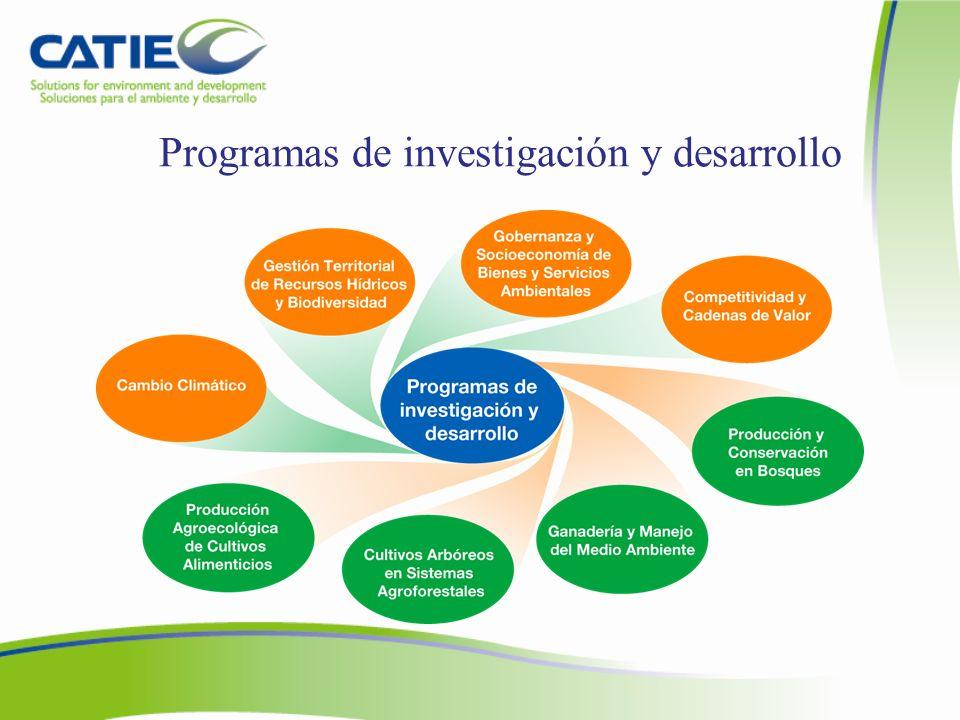 Programas de investigación y desarrollo