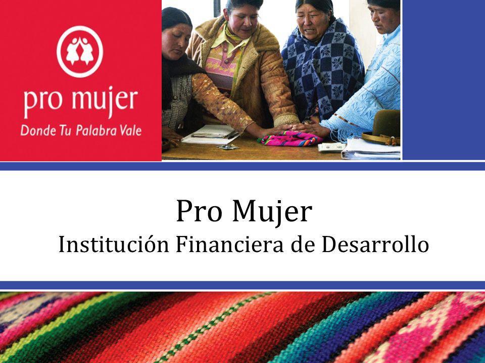 Pro Mujer Institución Financiera de Desarrollo