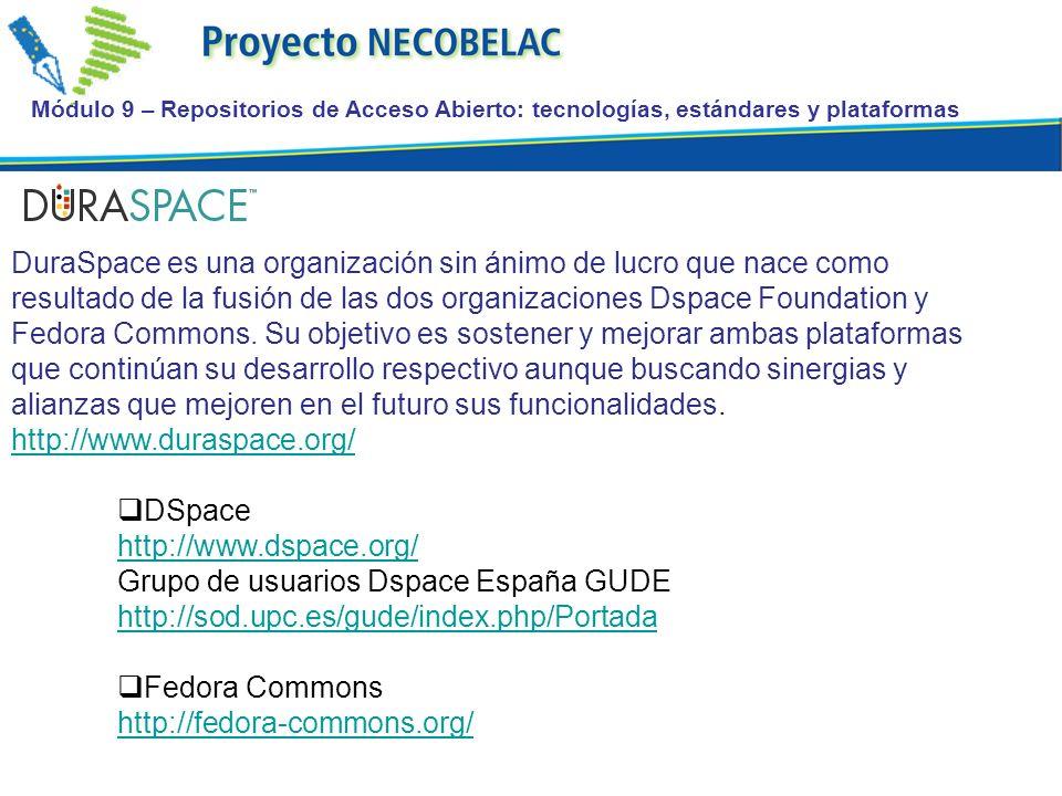Grupo de usuarios Dspace España GUDE