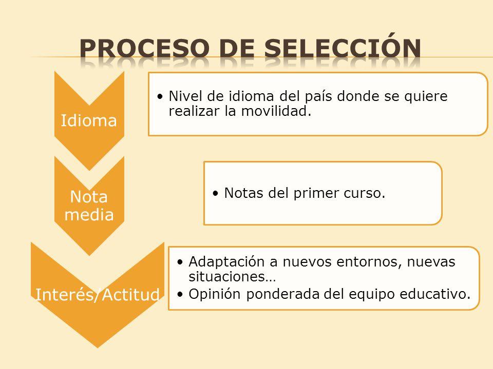 PROCESO DE SELECCIÓN Idioma Nota media Interés/Actitud