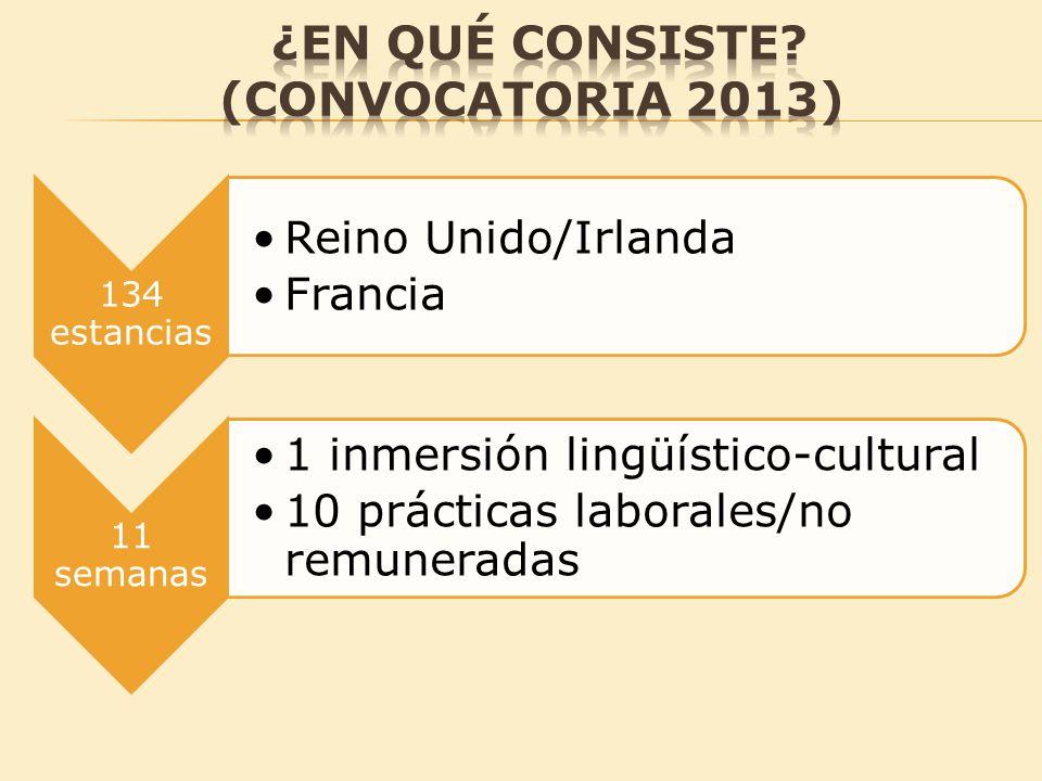 ¿En qué consiste (convocatoria 2013)