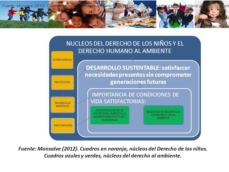 NUCLEOS DEL DERECHO DE LOS NIÑOS Y EL DERECHO HUMANO AL AMBIENTE