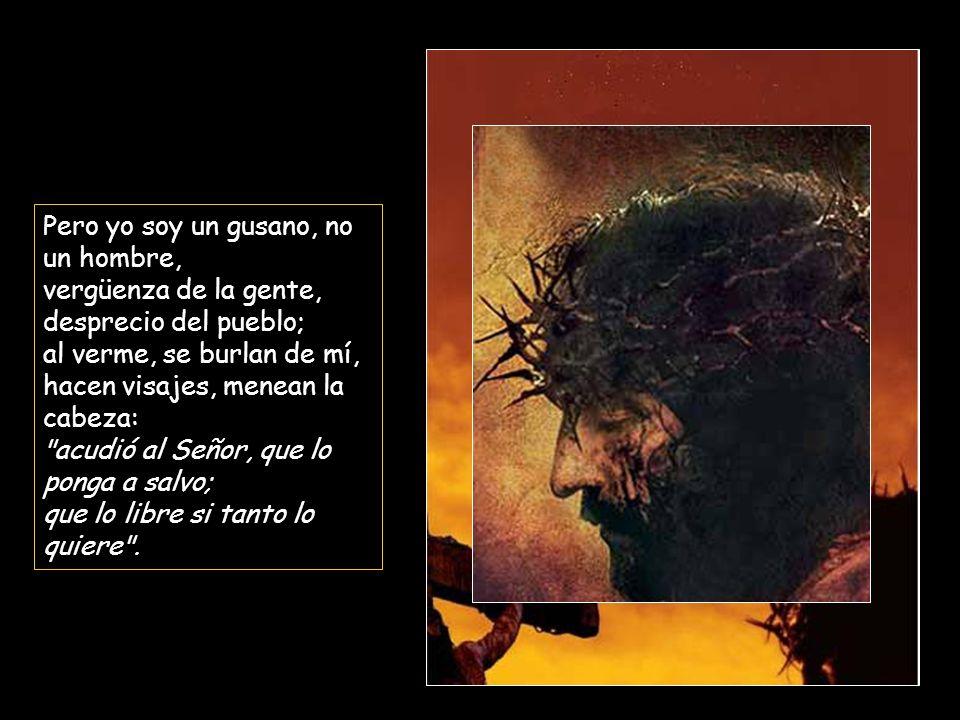 Pero yo soy un gusano, no un hombre, vergüenza de la gente, desprecio del pueblo; al verme, se burlan de mí, hacen visajes, menean la cabeza: acudió al Señor, que lo ponga a salvo; que lo libre si tanto lo quiere .