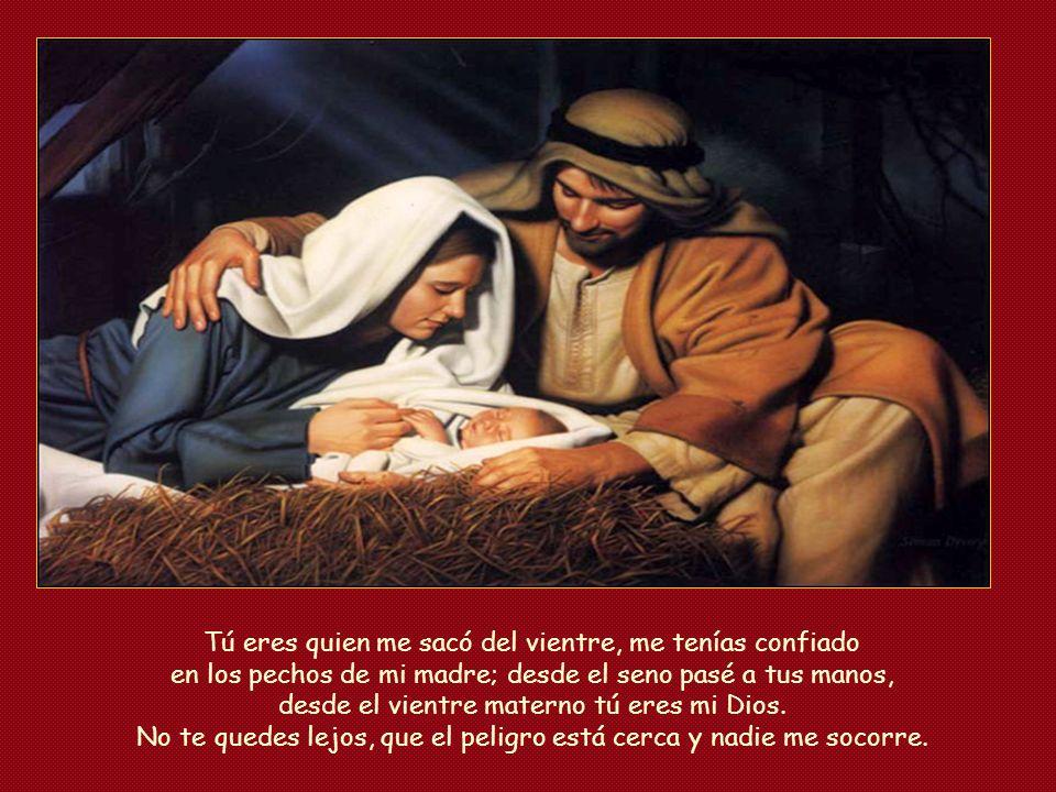 Tú eres quien me sacó del vientre, me tenías confiado en los pechos de mi madre; desde el seno pasé a tus manos, desde el vientre materno tú eres mi Dios.