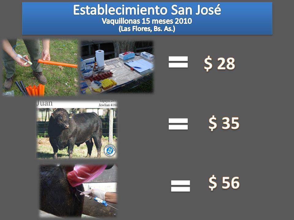 $ 28 $ 35 $ 56 Establecimiento San José