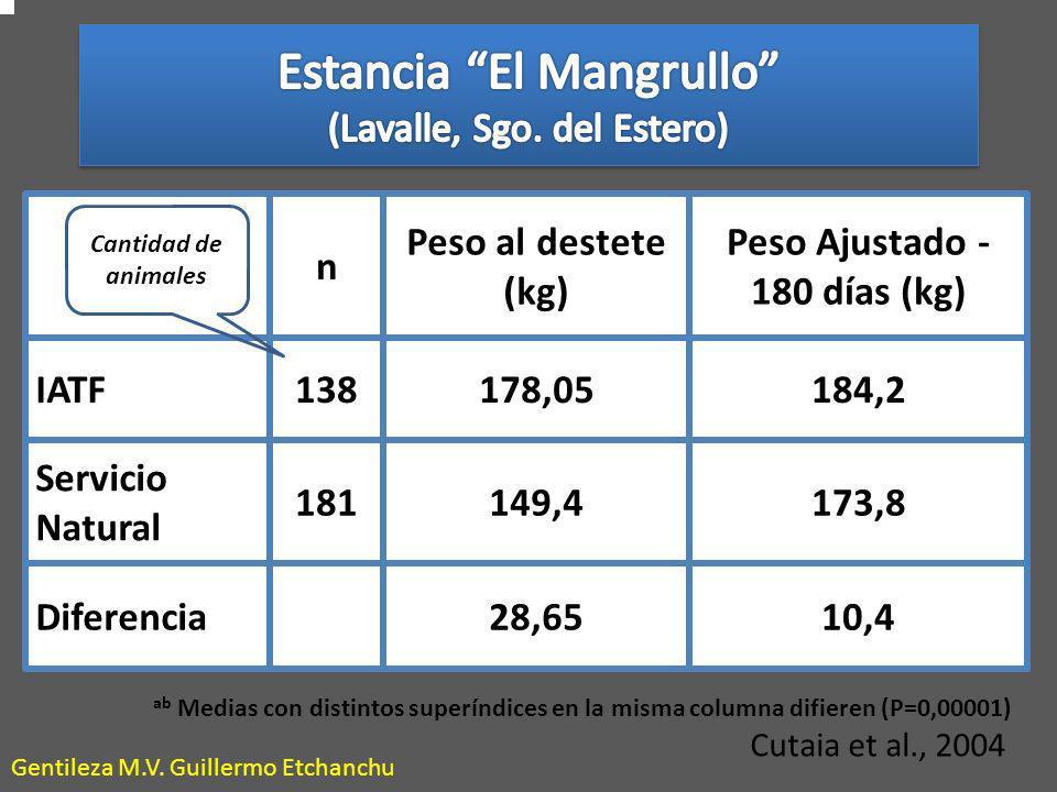 Estancia El Mangrullo (Lavalle, Sgo. del Estero)