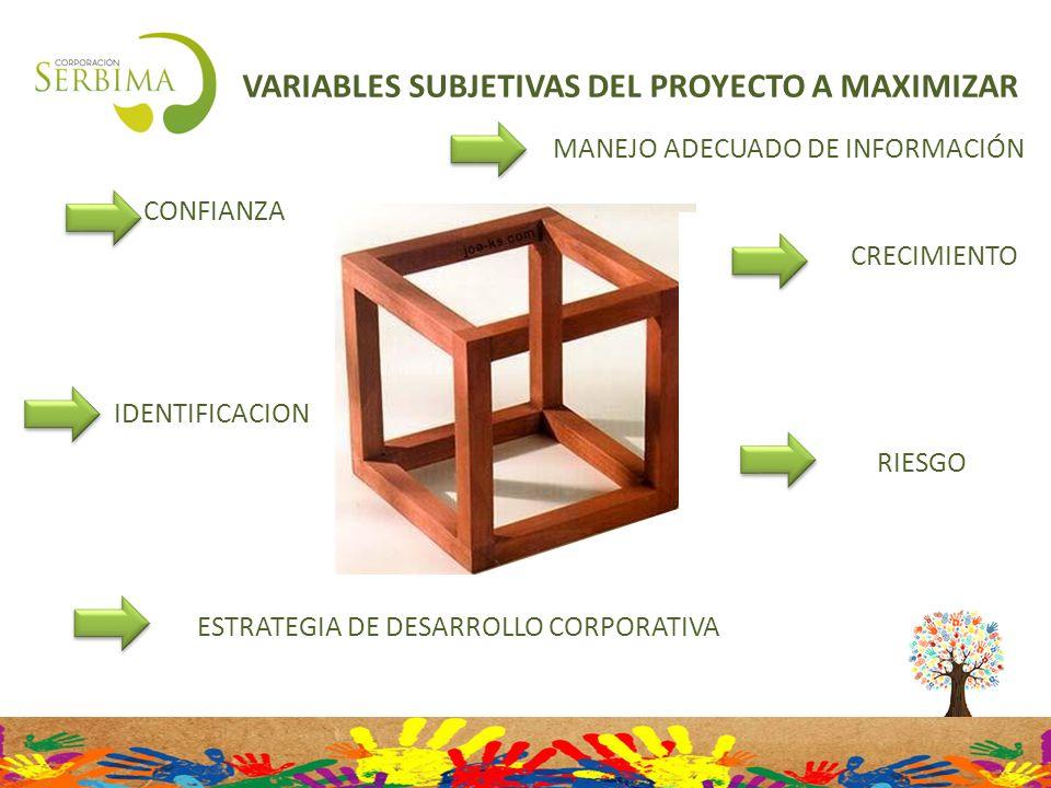 VARIABLES SUBJETIVAS DEL PROYECTO A MAXIMIZAR