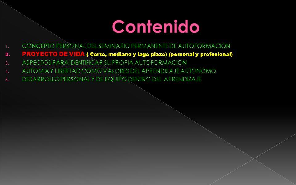 Contenido CONCEPTO PERSONAL DEL SEMINARIO PERMANENTE DE AUTOFORMACIÓN