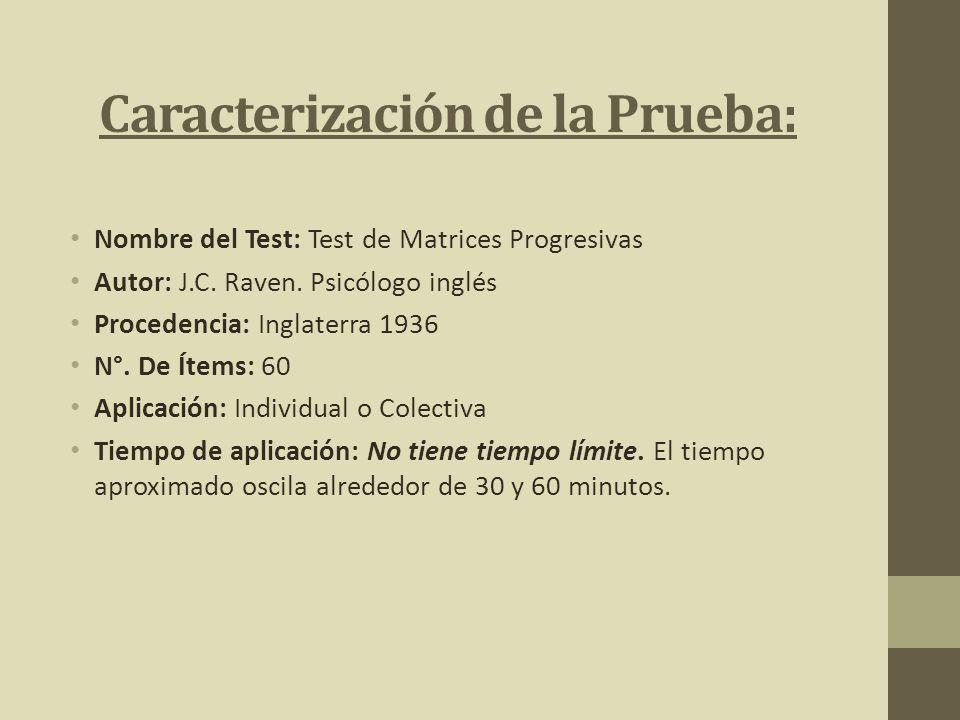 Caracterización de la Prueba:
