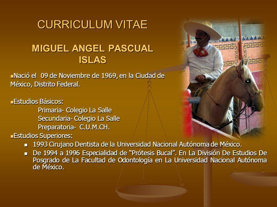 CURRICULUM VITAE MIGUEL ANGEL PASCUAL ISLAS