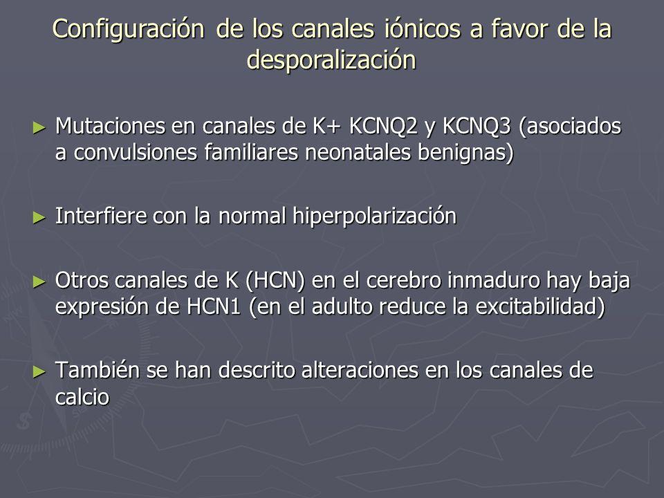 Configuración de los canales iónicos a favor de la desporalización