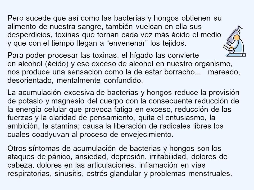 Pero sucede que así como las bacterias y hongos obtienen su alimento de nuestra sangre, también vuelcan en ella sus desperdicios, toxinas que tornan cada vez más ácido el medio