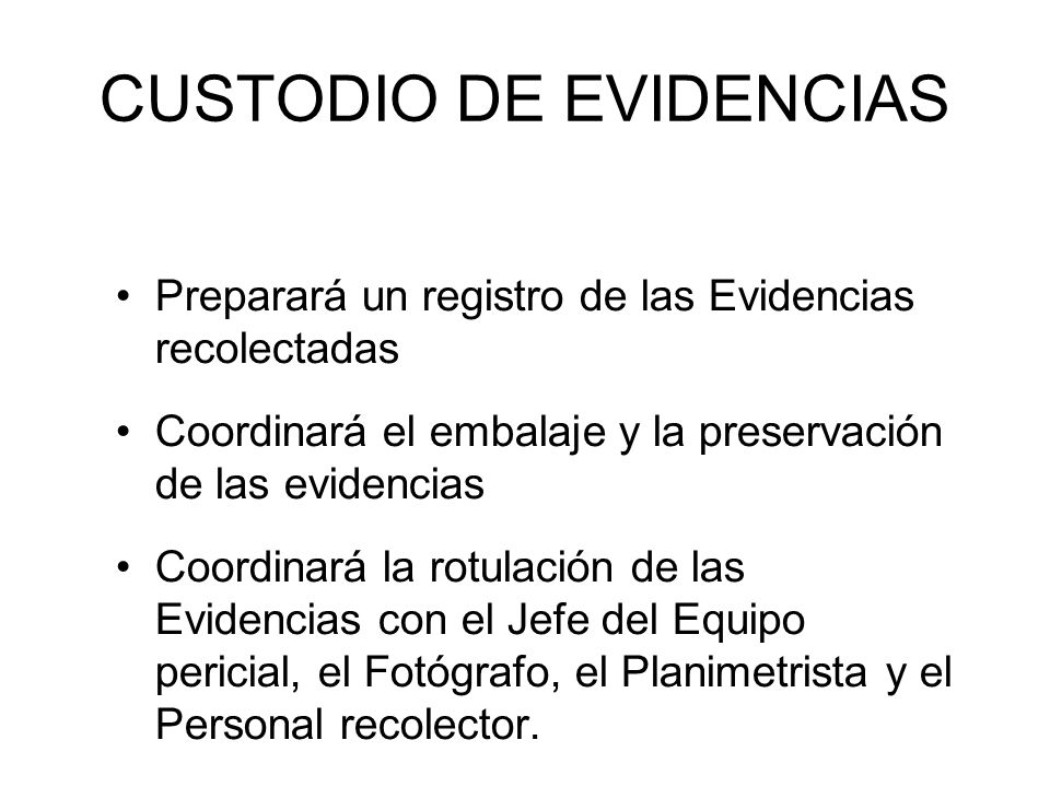 CUSTODIO DE EVIDENCIAS