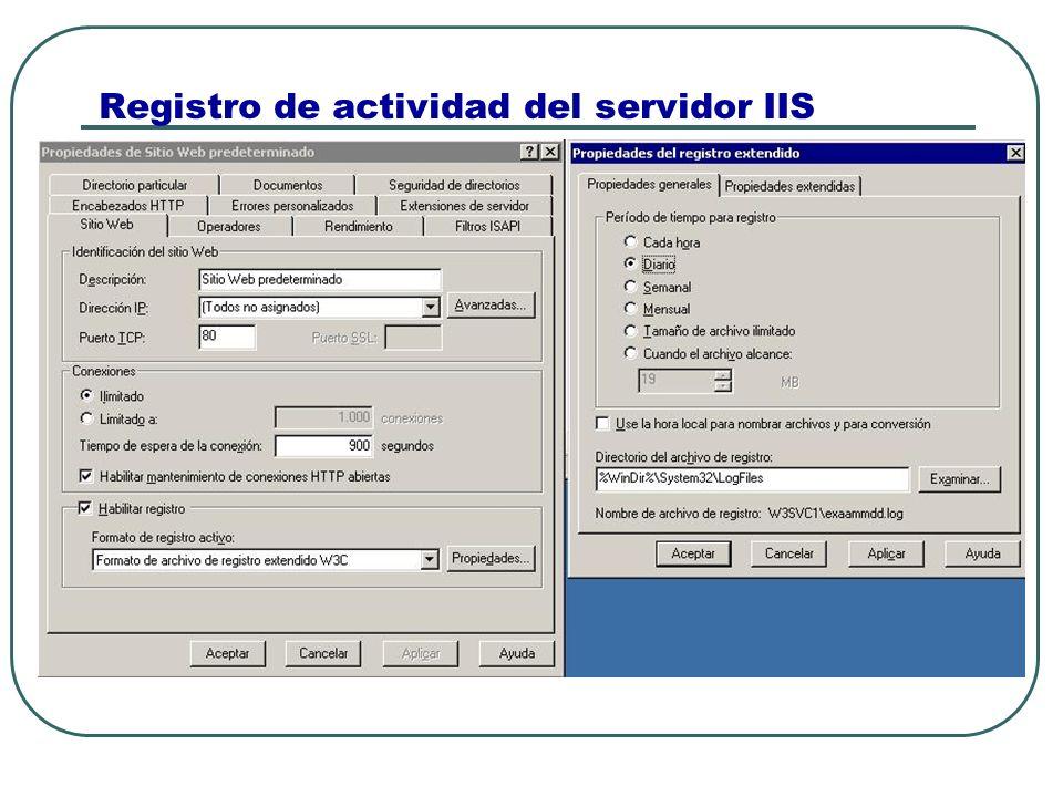 Registro de actividad del servidor IIS