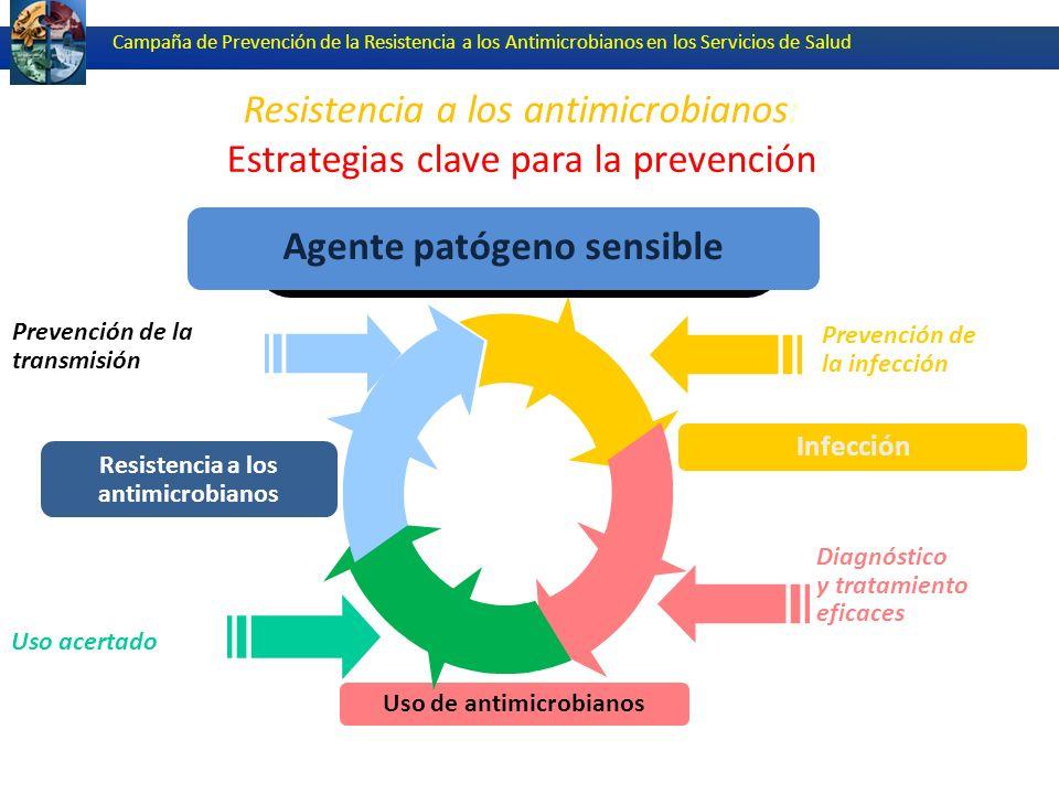Campaña de Prevención de la Resistencia a los Antimicrobianos (CDC)