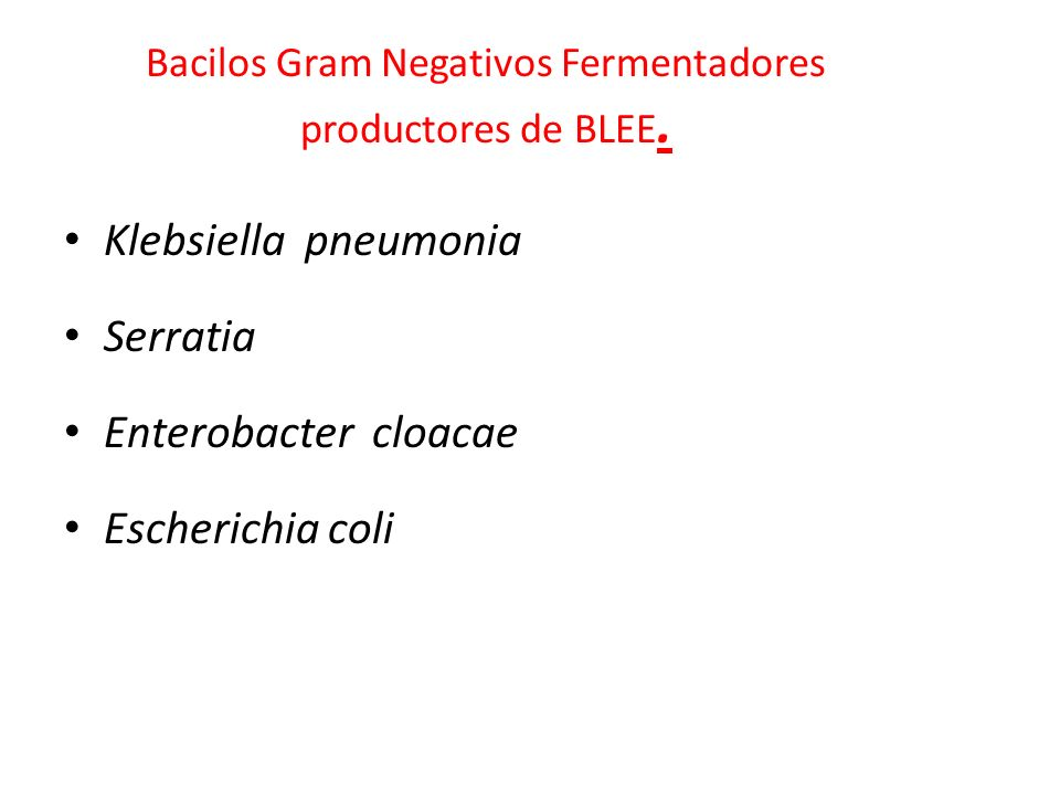 Bacilos Gram Negativos Fermentadores productores de BLEE.