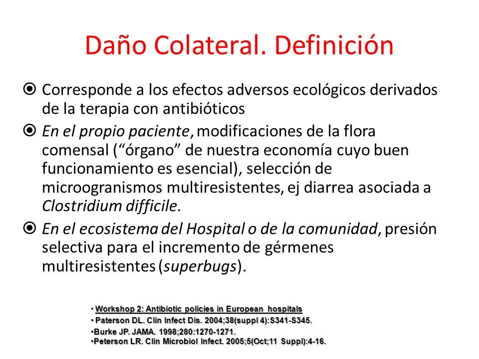 Daño Colateral. Definición