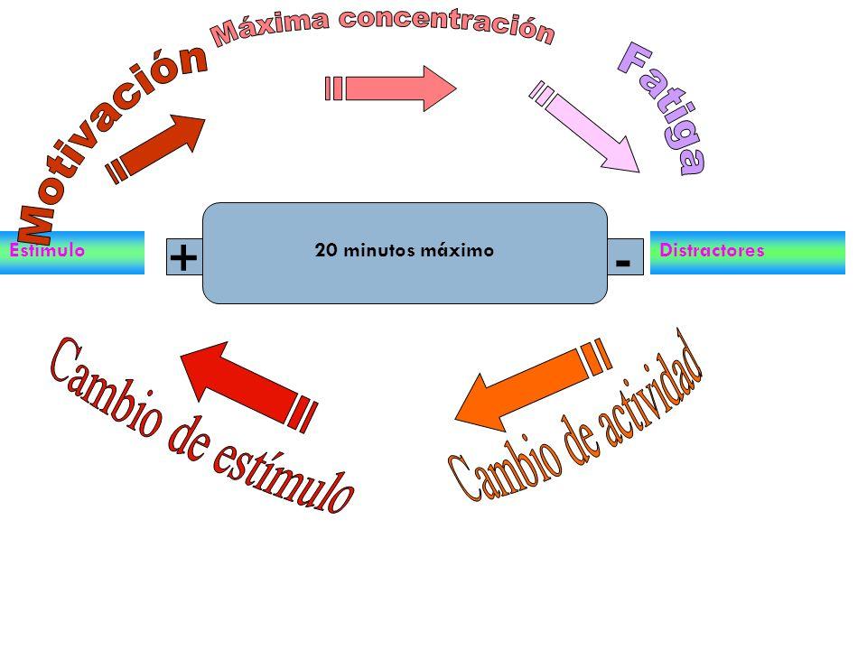 + - Máxima concentración Motivación Fatiga Cambio de actividad