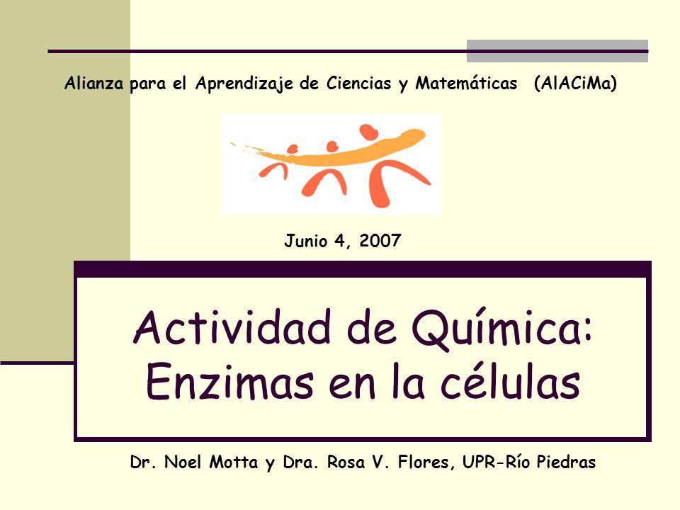 Actividad de Química: Enzimas en la células