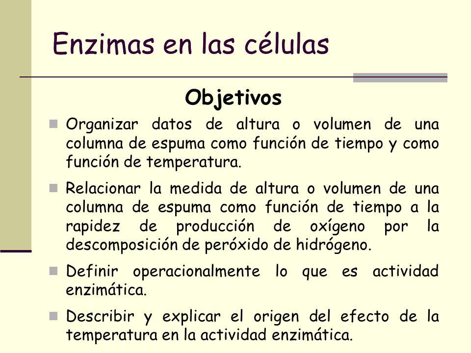 Enzimas en las células Objetivos