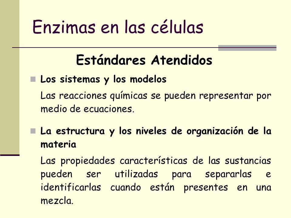 Enzimas en las células Estándares Atendidos Los sistemas y los modelos