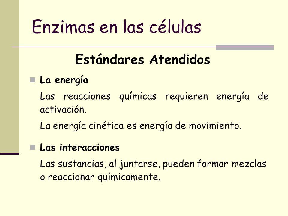 Enzimas en las células Estándares Atendidos La energía