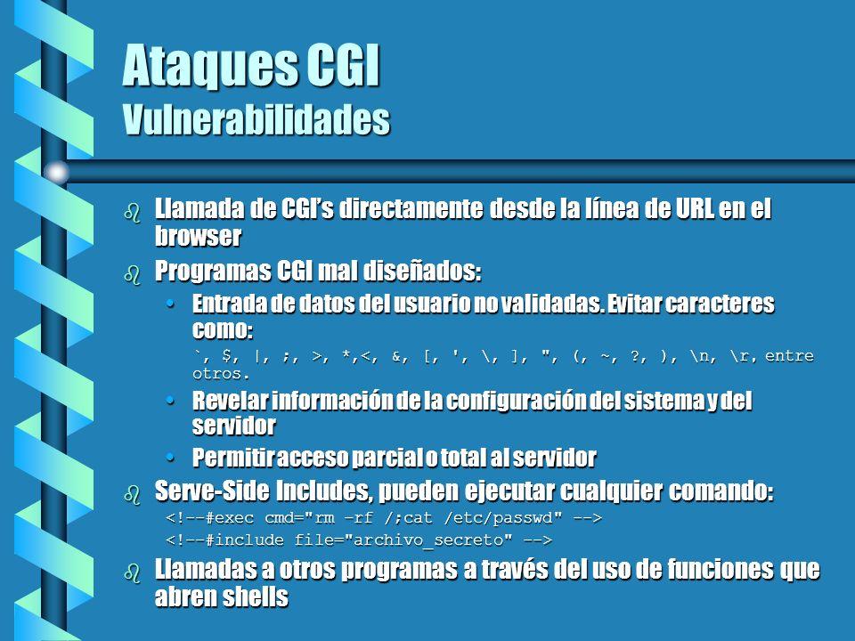 Ataques CGI Vulnerabilidades