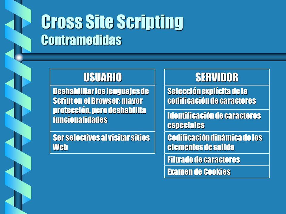Cross Site Scripting Contramedidas