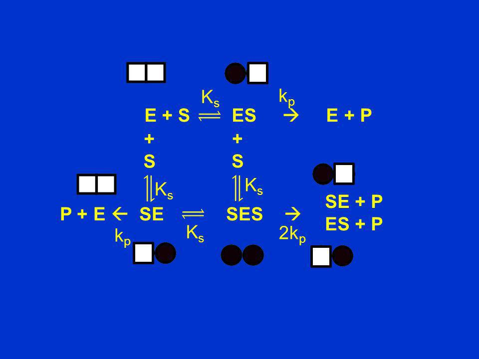 Ks kp. E + S ES  E + P. + S. + S. Ks. Ks. SE + P. ES + P. P + E  SE SES 