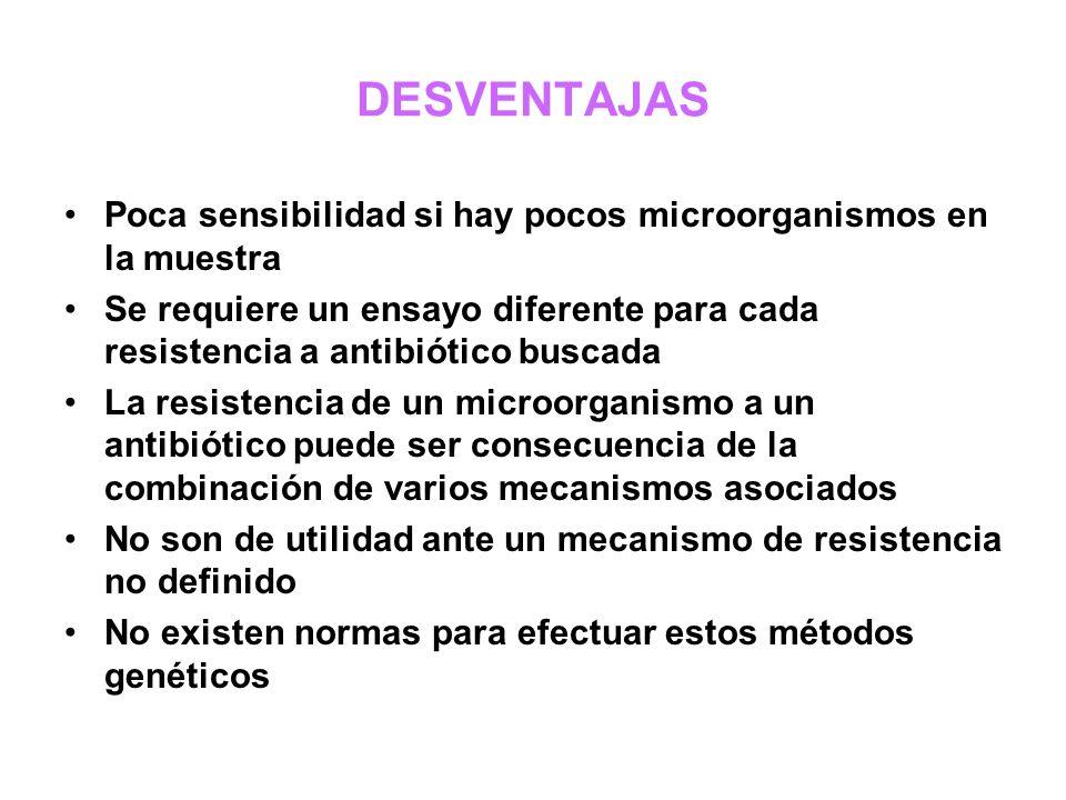 DESVENTAJAS Poca sensibilidad si hay pocos microorganismos en la muestra.