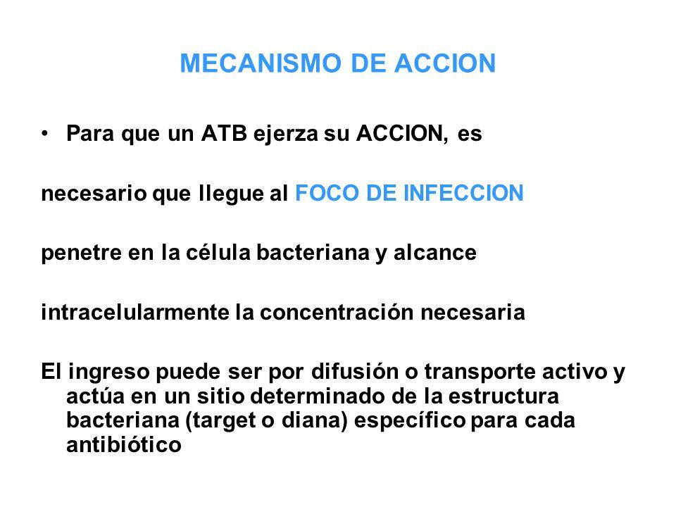 MECANISMO DE ACCION Para que un ATB ejerza su ACCION, es
