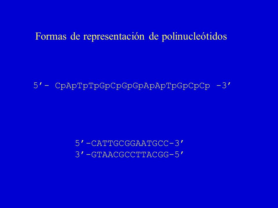 Formas de representación de polinucleótidos